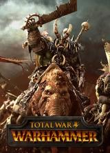 Official Total War Warhammer Old World Edition Steam CD Key